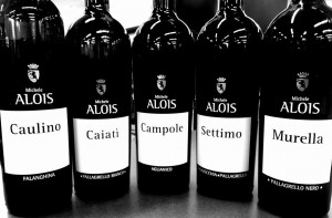 Alois Wines